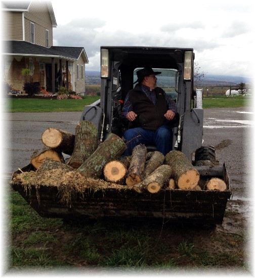 Moving firewood in New York 10/18/14