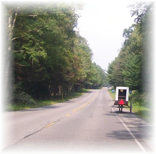 Nebraska Amish buggy on Rt. 45, Centre County, PA 9/3/11