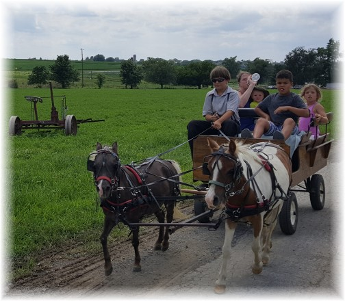 Amish tourist cart ride 7/15/17