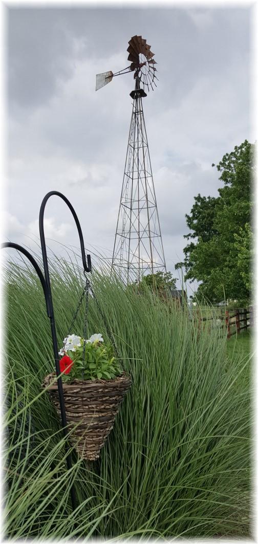 Old Windmill Farm 6/17/17