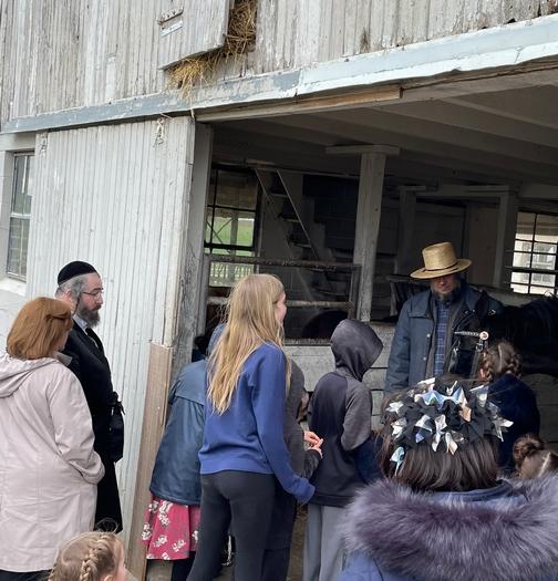 Old Windmill Farm barn tour