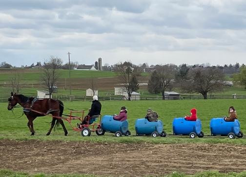 Old Windmill Farm barrel ride