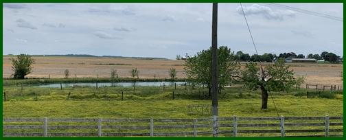 Old Windmill Farm pond 5/26/19