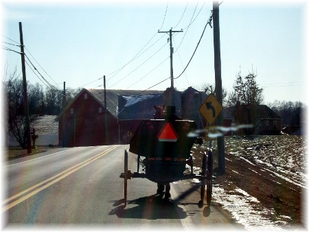 Open buggie on Colebrook Road 1-10-10