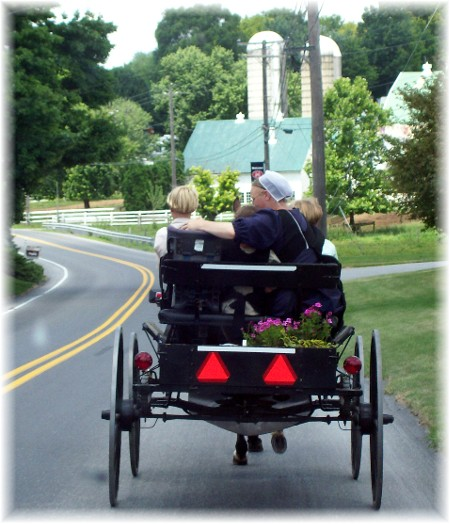 Open buggie in Lancaster County PA