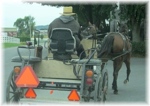 Amishman on open cart 10/9/13