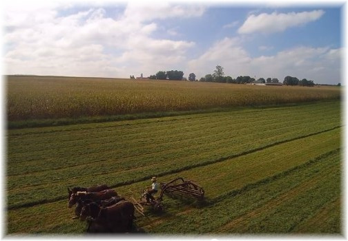 Raking hay from drone