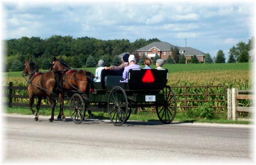 Shipshewana Amish cart