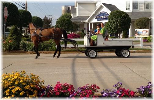 Shipshewana Amish open wagon 8/7/14