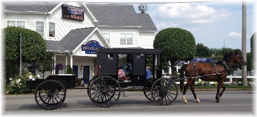 Shipshewana Amish horse&buggy with trailer 8/7/14