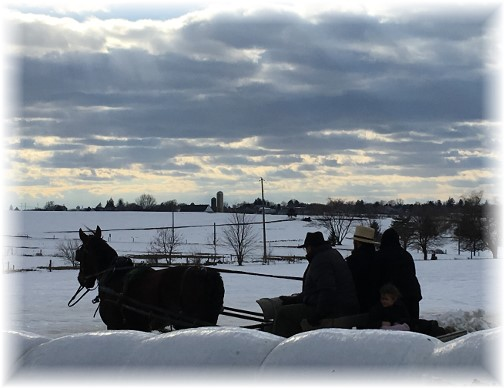 Sleigh ride in snow 1/29/16