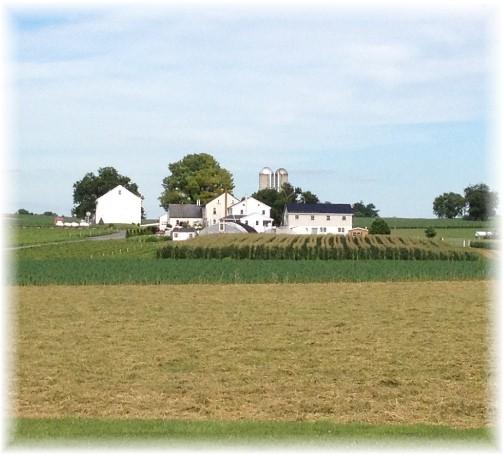 Lancaster County Amish farm on Landisville Road