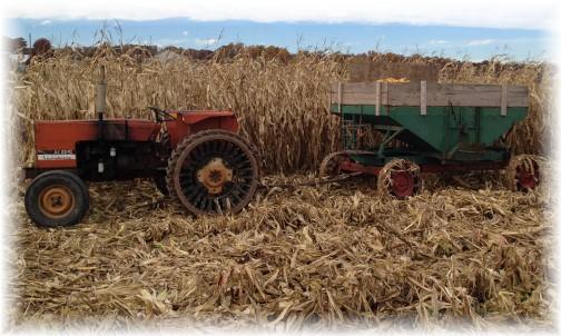 Tractor and corn wagon 11/2/15