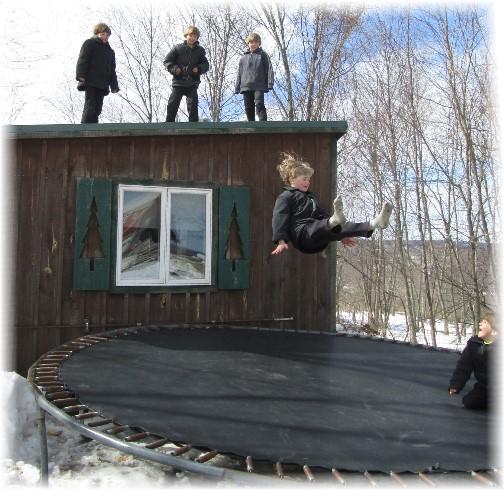 Amish boys jumping on trampoline, NY 3/23/14