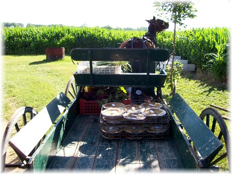 Wagon with homemade shoofly pies