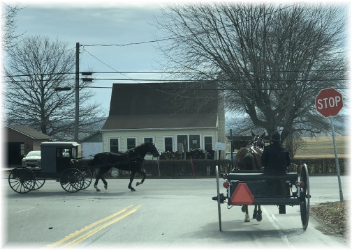 White Horse buggy traffic 2/15/18 Click to enlarge