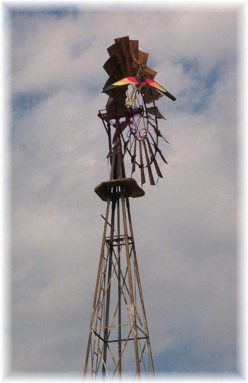Kite in windmill