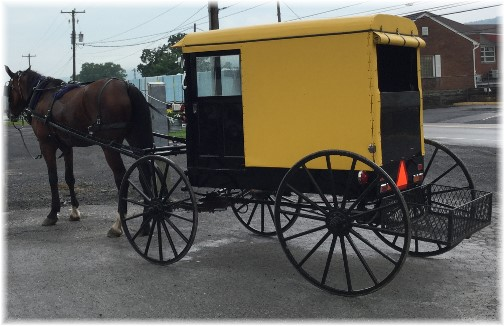Yellow buggy in Big Valley, PA 7/7/15