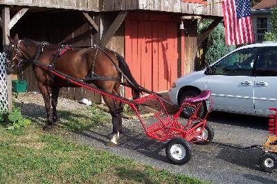 Photo of Amish chariot