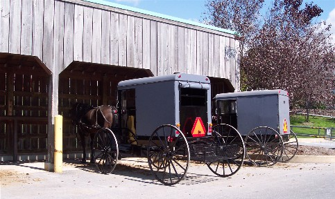 Amish parking at grocery store