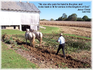 Photo of Amish man plowing
