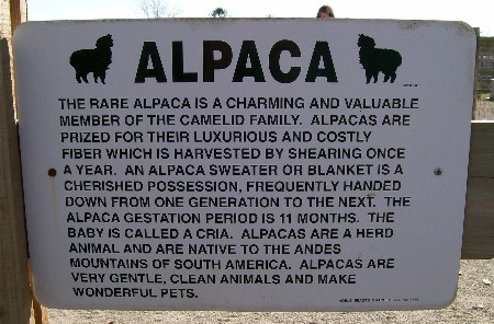 Eastland Alpaca farm, Lancaster County PA
