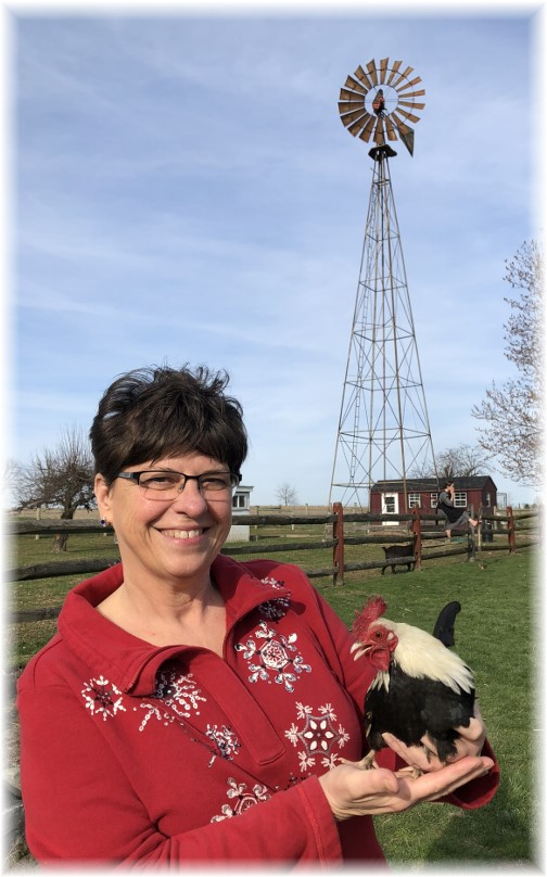 Brooksyne with chicken on the Old Windmill Farm 4/1/18