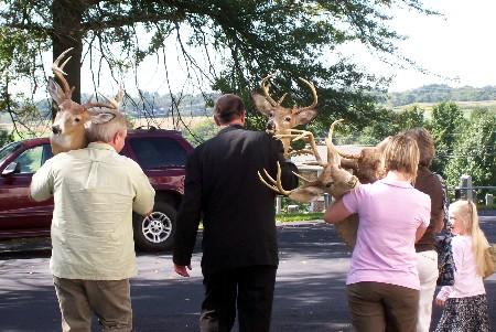 Deer mounts at Discover Joy