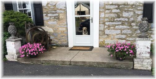Emma at door 7/2/15