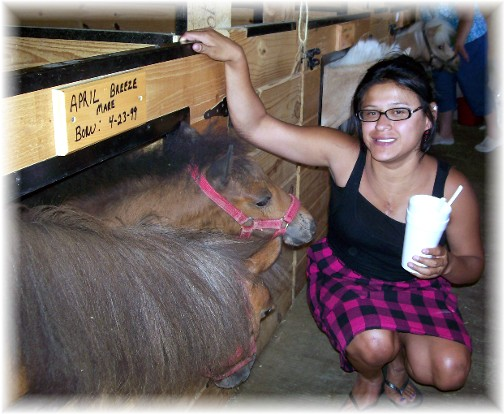 Ester with miniature horses