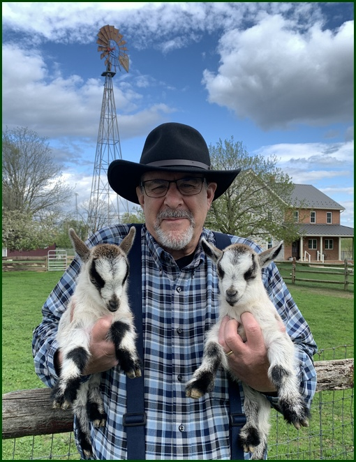 Baby goat twins on the Old Windmill Farm