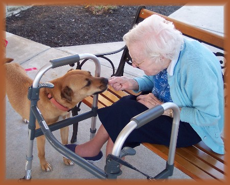 Roxie practicing pet therapy