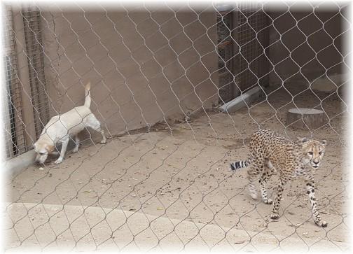 San Diego Zoo friends 10/24/16