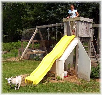 Sliding goat