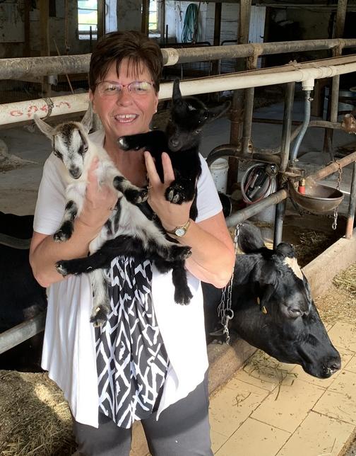 Twin goats on Old Windmill Farm 9/12/19