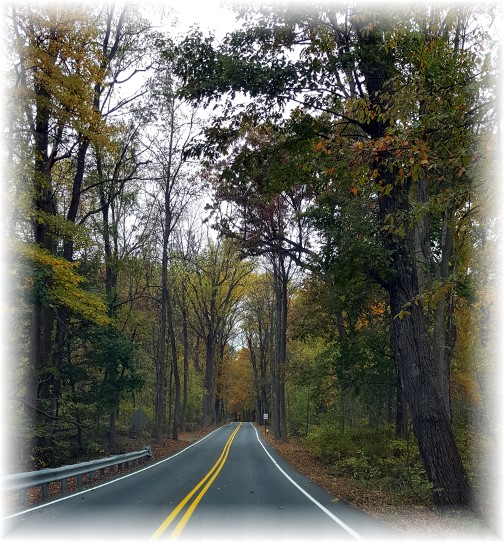 Autumn drive 11/1/15