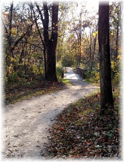 Wisconsin Autumn walk (Photo by Georgia)