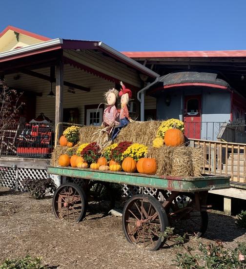 Fall wagon at Red Caboose 11/3/19