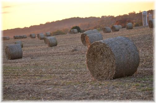 Hay bales (Photo by Doris High)