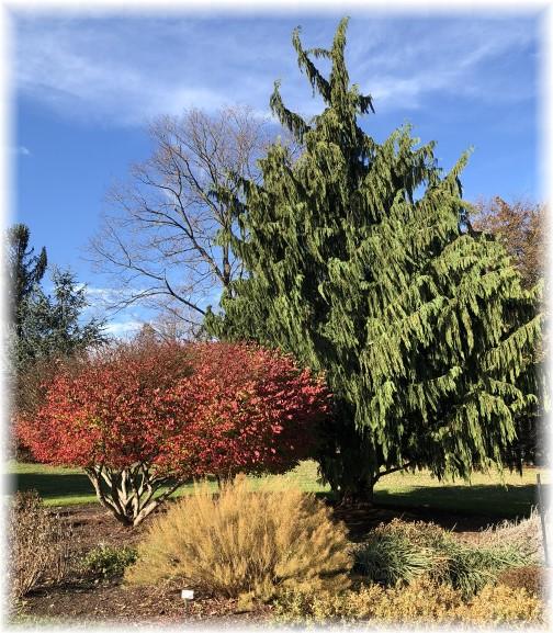 Hershey Gardens 11/21/17