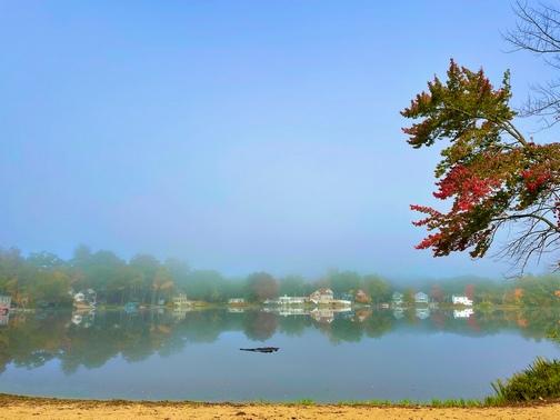 Misty New England pond