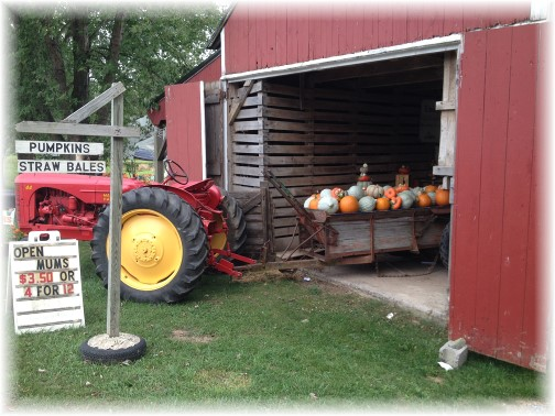 Union Mill Acres tractor and pumpkins 9/10/14