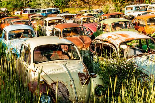 Bug graveyard (Howard Blichfeldt)