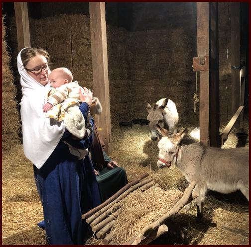 Living manger scene