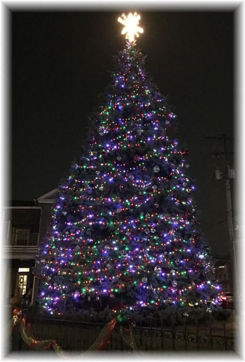 Mount Joy Christmas tree
