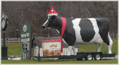 Turkey Hill Dairy Holiday Cow 12/22/13