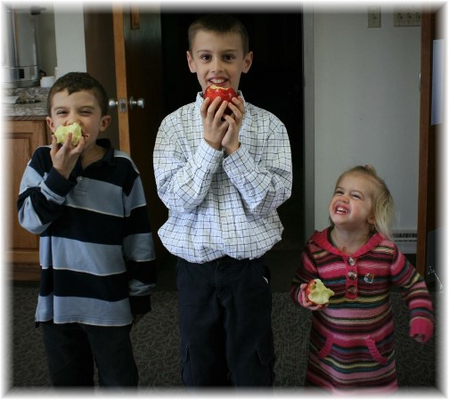 Apples for kids