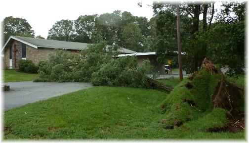 Fallen tree over church parking lot (Hurricane Irene)