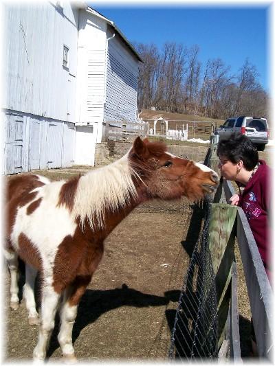 Brooksyne & horse
