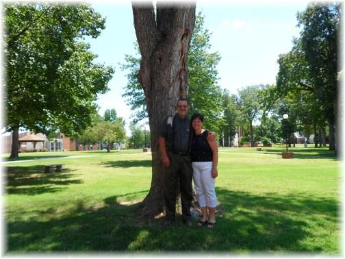 CBC tree 7/11/13